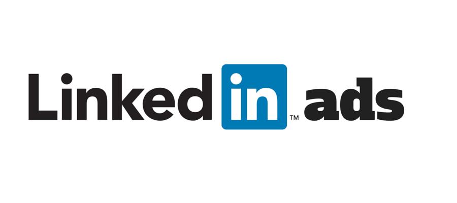 publicité LinkedIn, Long media